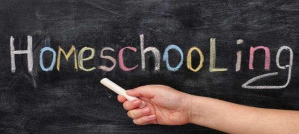 Homeschooling: la problemática de que un menor curse en España su educación a distancia y en casa.